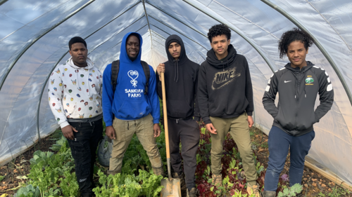 Students standing in a greenhouse
